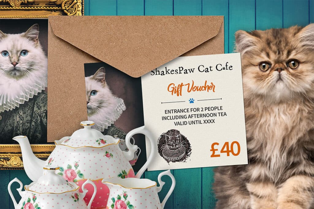Forty Pounds Shakespaw Cat Cafe Voucher